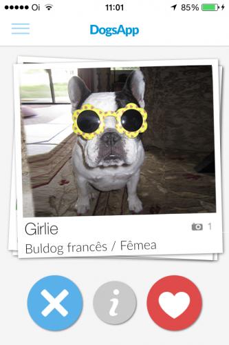 Cachorros vão poder encontrar seu par perfeito através do app. (Foto: Divulgação)