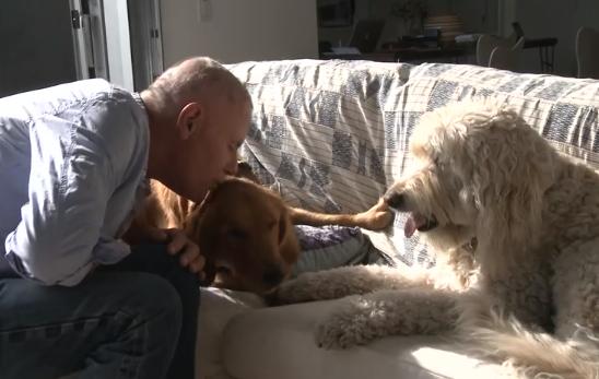 O cachorro Kanga foi adotado por John e ganhou uma irmã canina chamada Gracie. (Foto: Reprodução / Youtube)