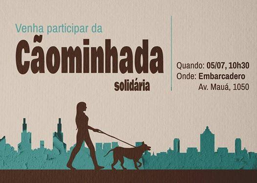 Foto: Reprodução / Facebook / Open Bar Canino