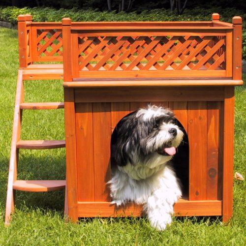 O cão tem dois lugares diferentes para ficar na casinha. (Foto: Reprodução / Amazon)