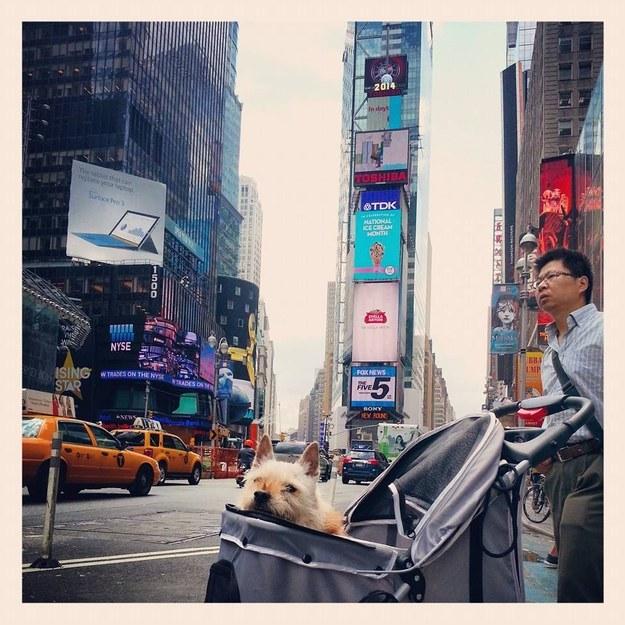 A Times Square não podia ficar de fora da lista. (Foto: Reprodução / Buzzfeed)