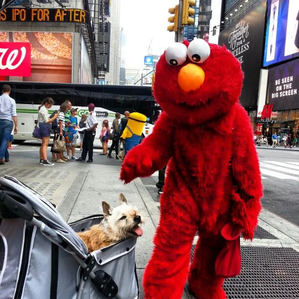 Elmo conheceu seu xará. (Foto: Reprodução / Buzzfeed)