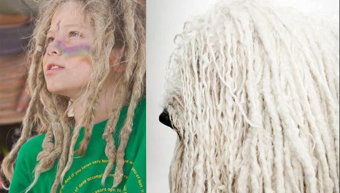 kamondor-rastafaria-penteado-01