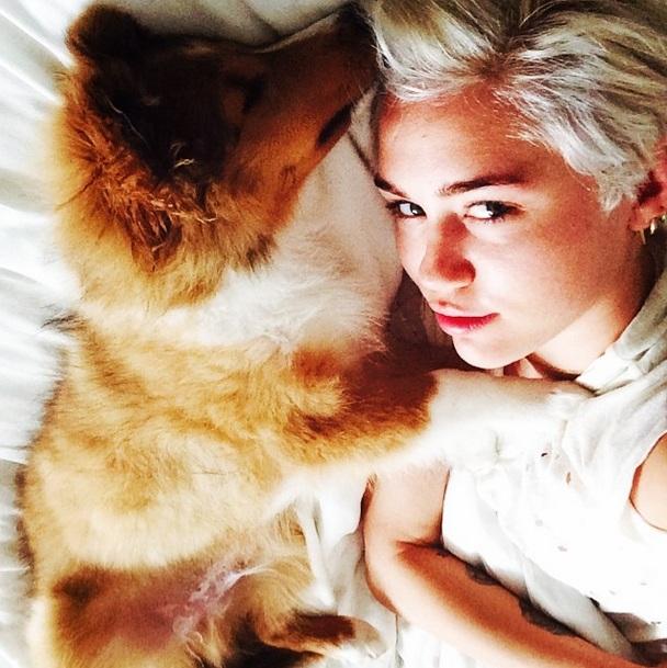 Miley Cyrus e seu novo cachorro, Emu Coyne Cyrus. (Foto: Reprodução / Instagram)