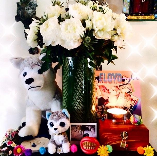Miley Cyrus fez um altar em memória do seu cão Floyd, que faleceu em abril. (Foto: Reprodução / Instagram)