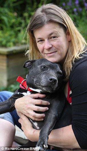 Sharon Collins e sua cachorra Ellie estão juntas novamente. (Foto: Reprodução / Daily Mail uk)