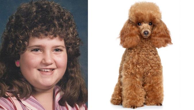 mullet-poodle-mulheres-penteado