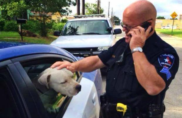 O sargento Gary Carter resgatou o pit bull da rua. (Foto: Reprodução / Pet 360)