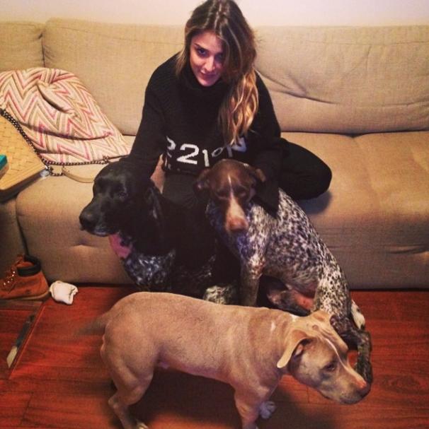Rafa Brites e os cães Bisteca, Farofa e Xavier. (Foto: Reprodução / Instagram)