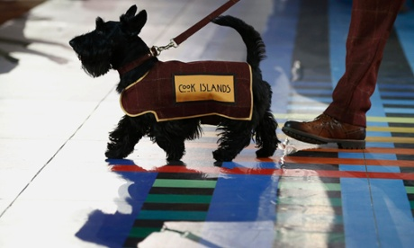 terrier-escoces-commonwealth-jogos-abertura-cachorros-02