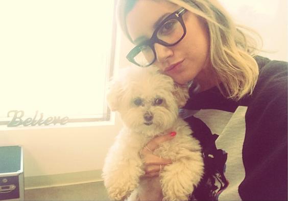 Ashley Tisdale com sua cachorra Maui. (Foto: Reprodução / Instagram)