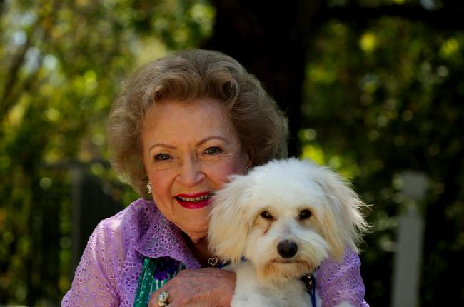 Betty White ajudou o cachorro Einstein a encontrar um novo lar. (Foto: Reprodução / Bark Post)