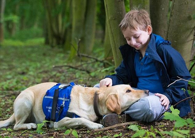 Jacob se tornou mais confiante com a ajuda da cachorra Araminta. (Foto: Reprodução / Daily Mail)