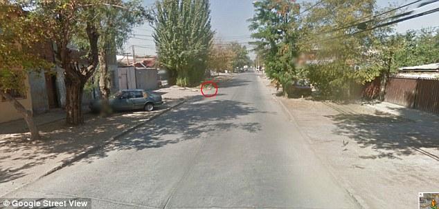 Cachorro aparecendo na frente do carro do Google Street View. (Foto: Reprodução / Daily Mail uk)