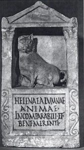 Tumba da cadela Helena. Foto: Reprodução