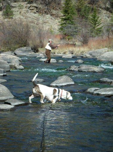Marsha adora acompanhar seu tutor durante a pescaria. (Foto: Reprodução / Bark Post)