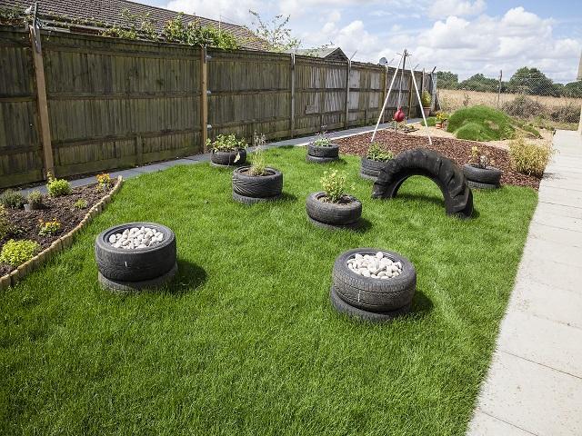 Jardim enriquedico para cães: Foto: Reprodução