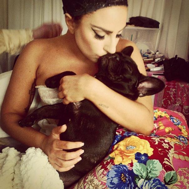 Lady Gaga costuma levar a cachorra Asia para todos os lugares. (Foto: Reprodução / Instagram)
