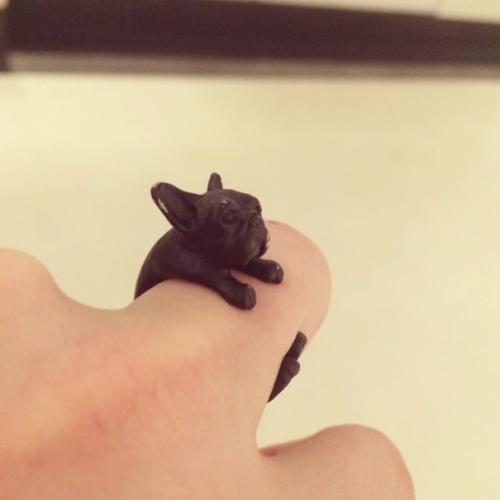 Uma fã deu esse anel em formato parecido com a cachorra Asia. (Foto: Reprodução / Instagram)
