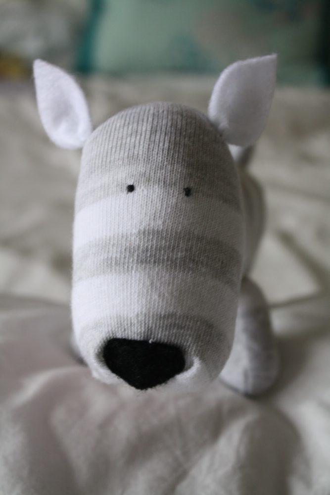 meias-formando-cachorros-imagens-PdD (15)