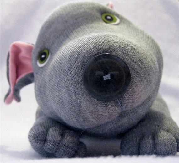 meias-formando-cachorros-imagens-PdD (8)