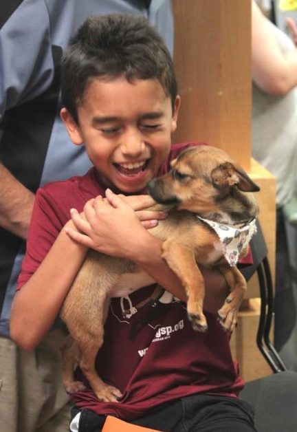 (Foto: Reprodução / Facebook / City of Arlington Animal Services Center)