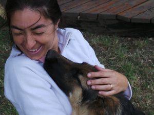 Projeto Mundo Cão. Foto: Divulgação
