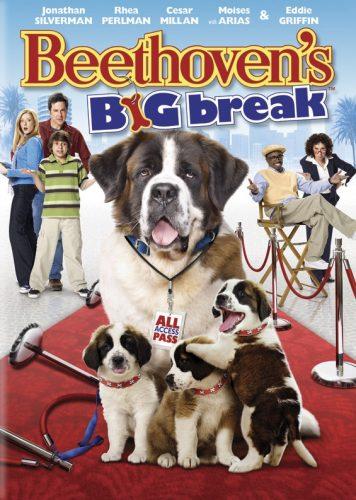Após o primeiro filme do Beethoven, muitos queriam ter um cachorro da raça são bernardo. (Foto: Reprodução / Google)