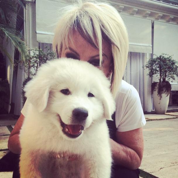 Ana Maria Braga adotou a cachorra Pepa. (Foto: Reprodução / Instagram)