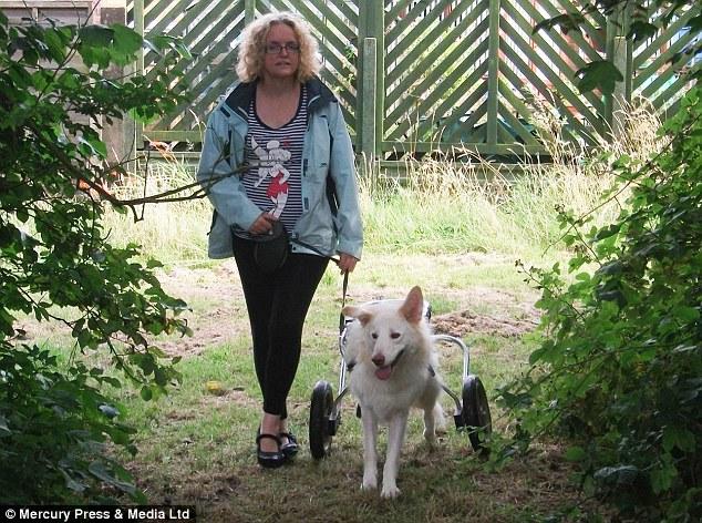Kay Greenwood adotou o cachorro Lucky. (Foto: Reprodução / Daily Mail)