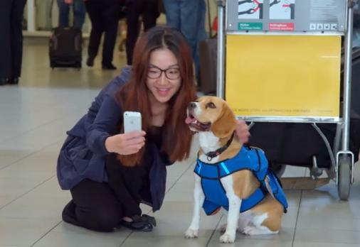 Ele faz parte até de selfies! (Foto: Reprodução / Youtube / KLM)