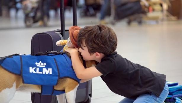 Menino abraçando o cachorro, que encontrou e devolveu seu boneco. (Foto: Reprodução / Youtube / KLM)
