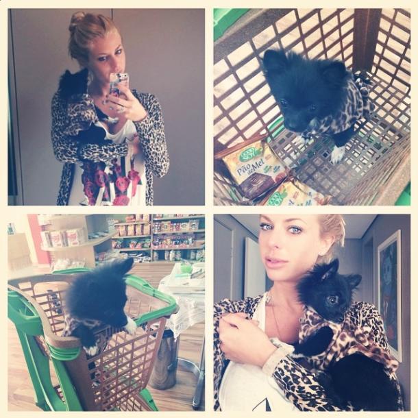 Cookie acompanha Caroline Bittencourt até durante as compras. (Foto: Reprodução / Instagram)