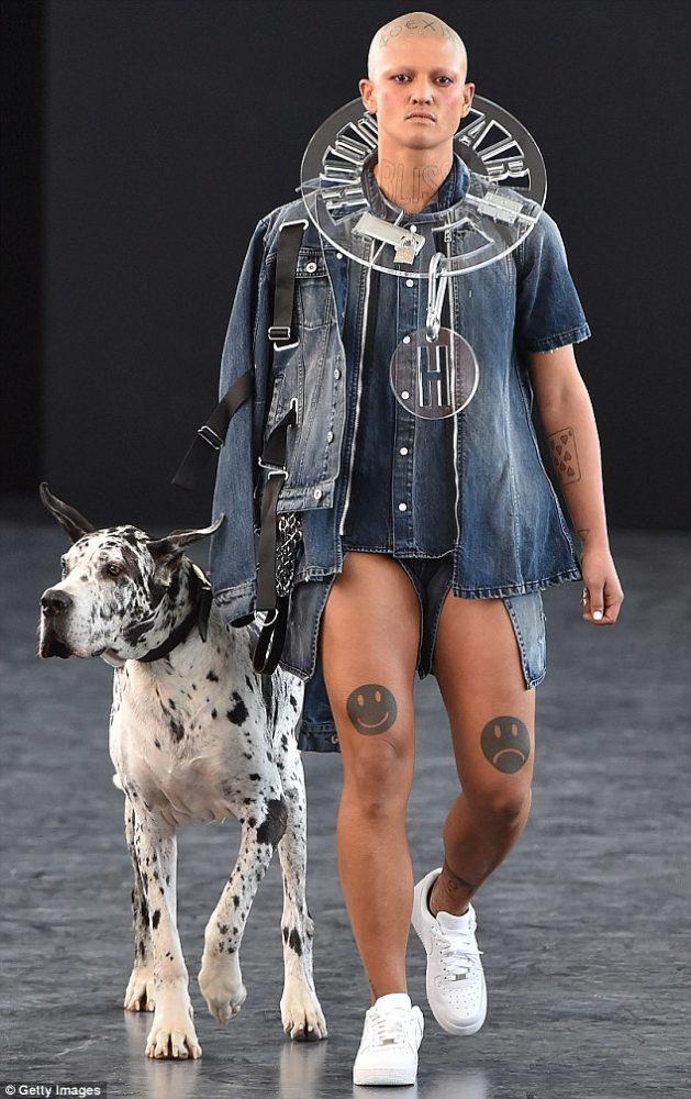 Um dog alemão chamou atenção no NYFS. (Foto: Reprodução / Daily Mail uk)