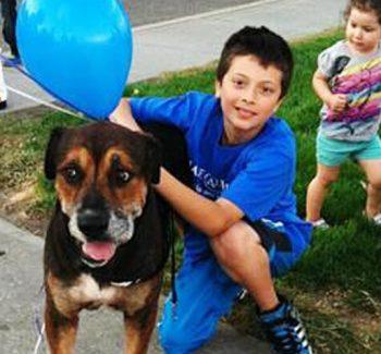 A Make-A-Wish trouxe o cachorro Popelle para perto do garoto Francisco. (Foto: Reprodução / Bark Post)