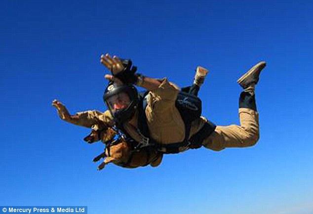 Foi o primeiro salto do cão Riley. (Foto: Reprodução / Daily Mail)