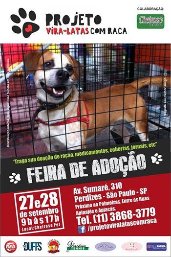 (Foto: Reprodução / Facebook / Projeto Vira-Lata Com Raça)