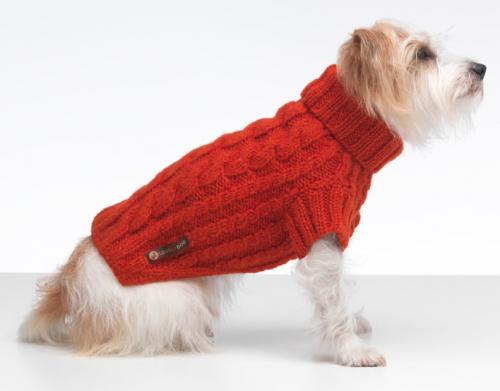 Suéter para cães. (Foto: Divulgação / lovemydog)