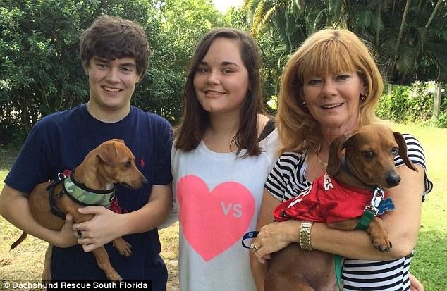 Agora o cão Pooh tem um lar. (Foto: Reprodução / Daily Mail UK)