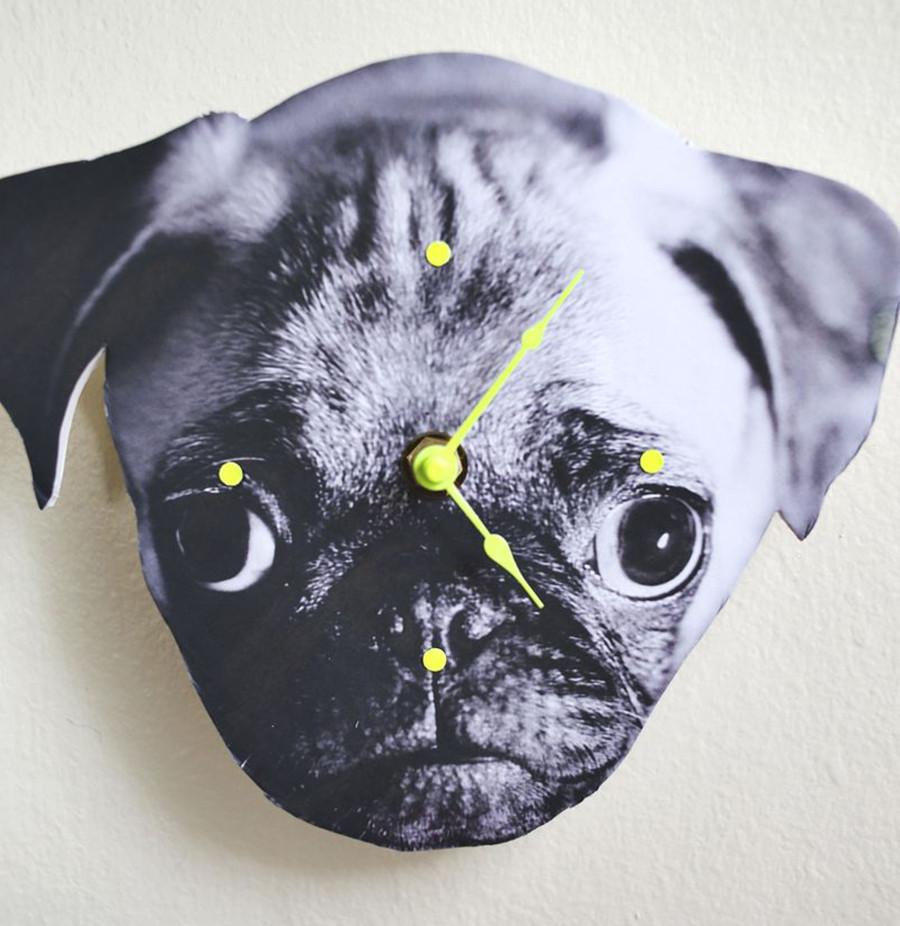 boas-ideias-cachorro-criatividade (4)