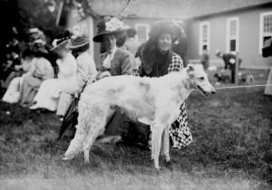 Borzoi antigo. (Foto: Reprodução / The I Love Dogs Site)