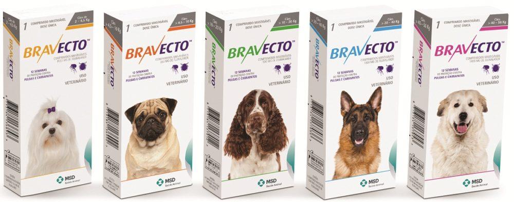 Bravecto é um comprimido mastigável que protege contra pulgas e carrapatos por 12 semanas. (Foto: Divulgação)