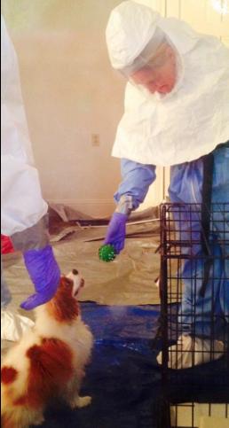 Veterinário brincando com o cachorro. (Foto: Reprodução / Twitter / Sana Syed)