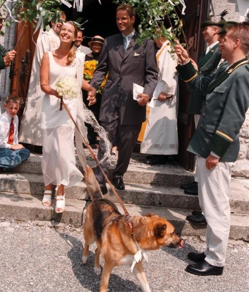 cachorros-casamentos-07