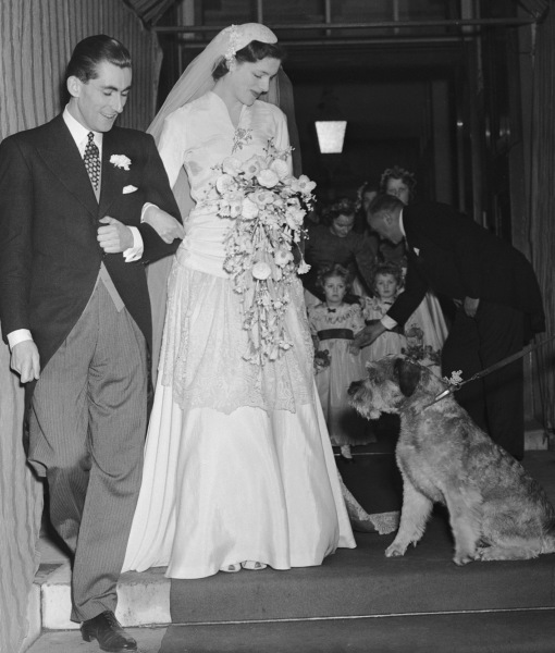 cachorros-casamentos-08