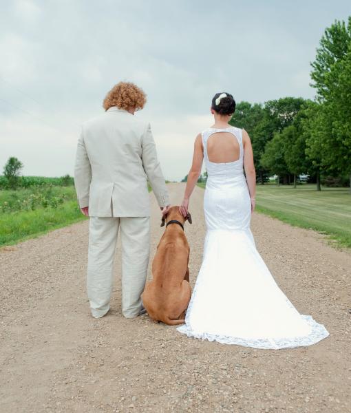 cachorros-casamentos-11