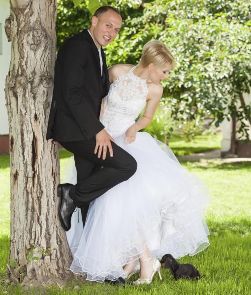 cachorros-casamentos-12