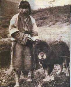 Mastim Tibetano antigo. (Foto: Reprodução / The I Love Dogs Site)