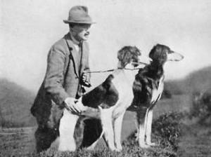 Saluki antigo. (Foto: Reprodução / The I Love Dogs Site)