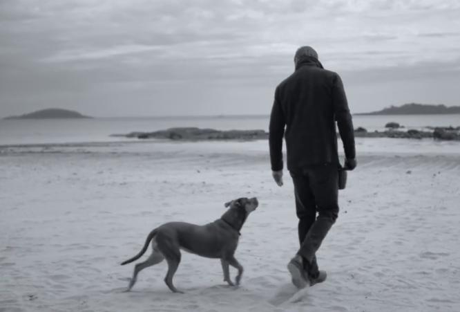 Tom Brady e a cachorra Lua no comercial da UGG Australia. (Foto: Reprodução / Youtube / uggaustralia)